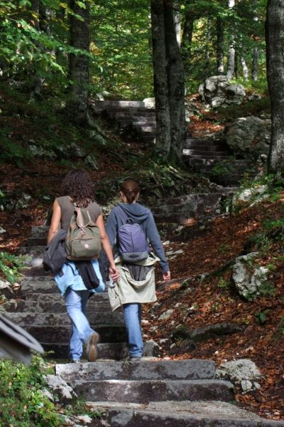 Local hiking trails in Bohinj